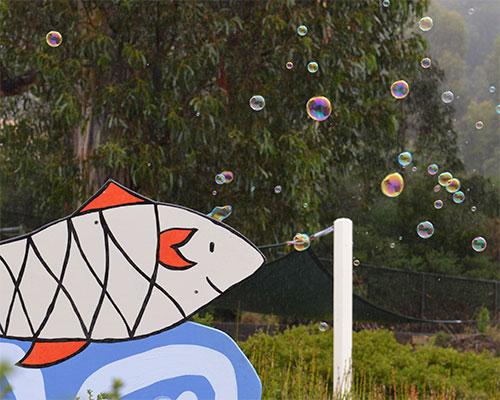 bubbles_9122